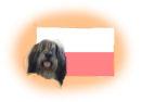Polnische Hunderassen