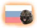 russische Hunderassen