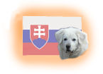 slowakische Hunderassen