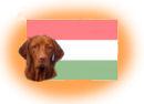 Ungarische Hunderassen
