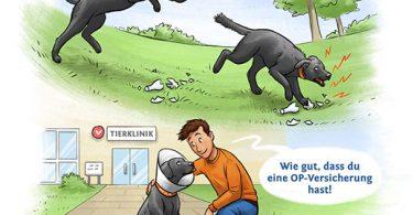 hunde opversicherung